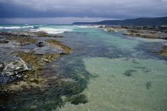 Australian ocean scene. Photo by Dr. Rohan Davis.