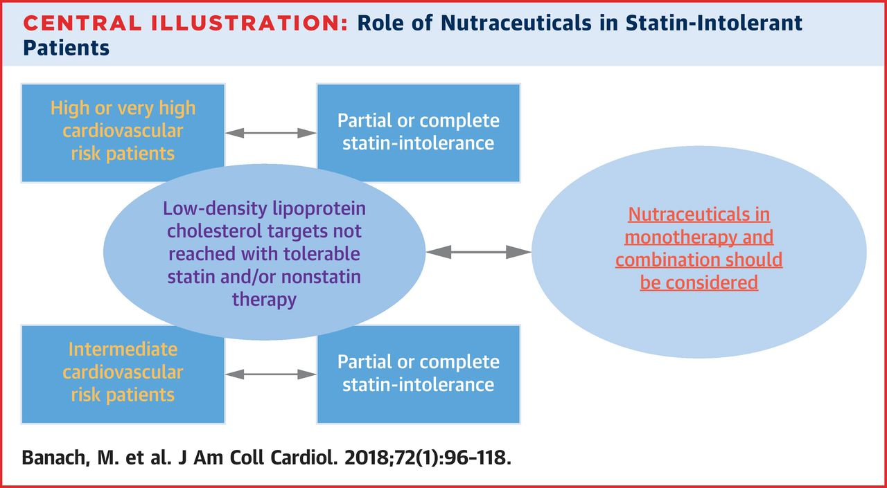 The Role of Nutraceuticals in Statin Intolerant Patients