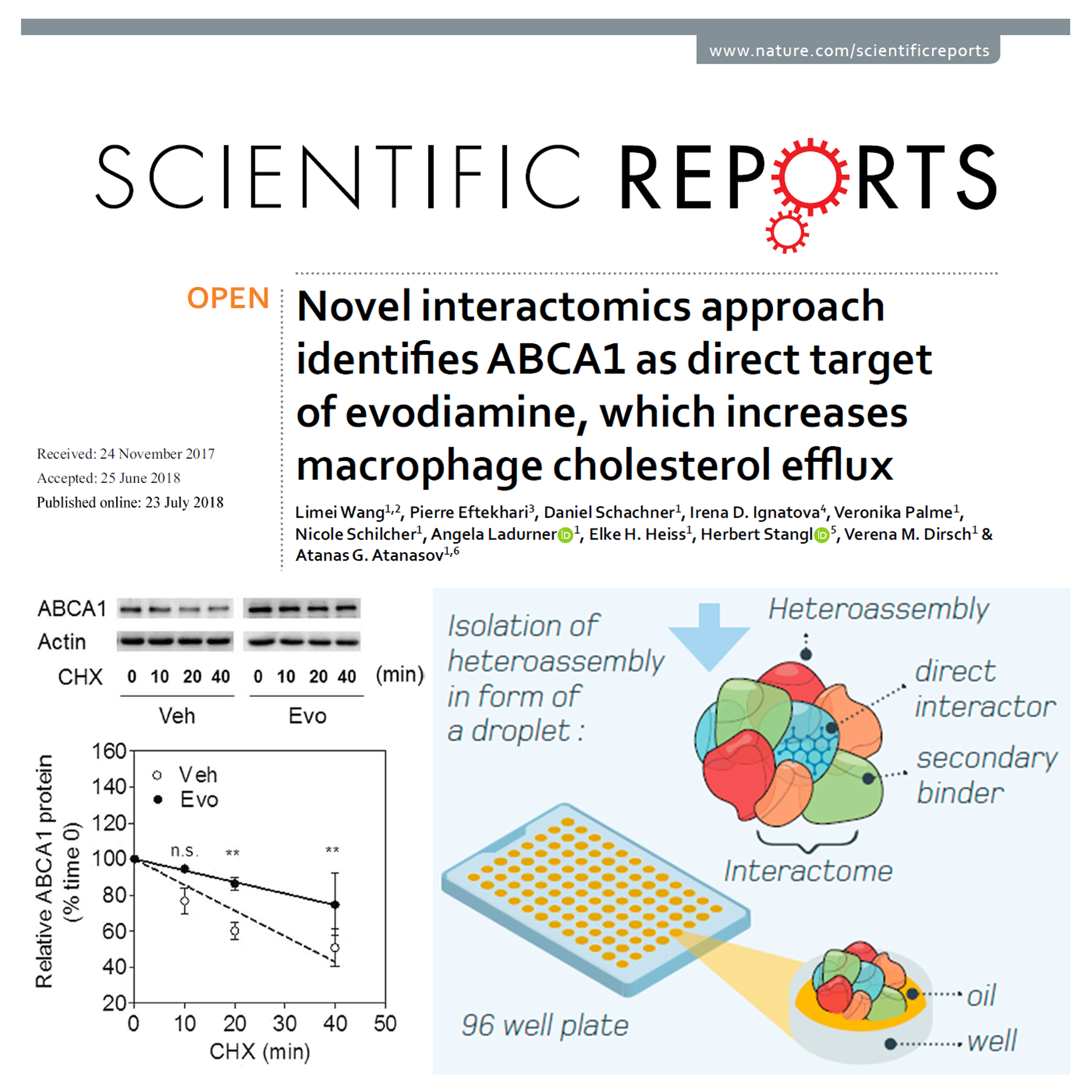 Novel interactomics approach identifies ABCA1 as direct target of evodiamine which increases macrophage cholesterol efflux