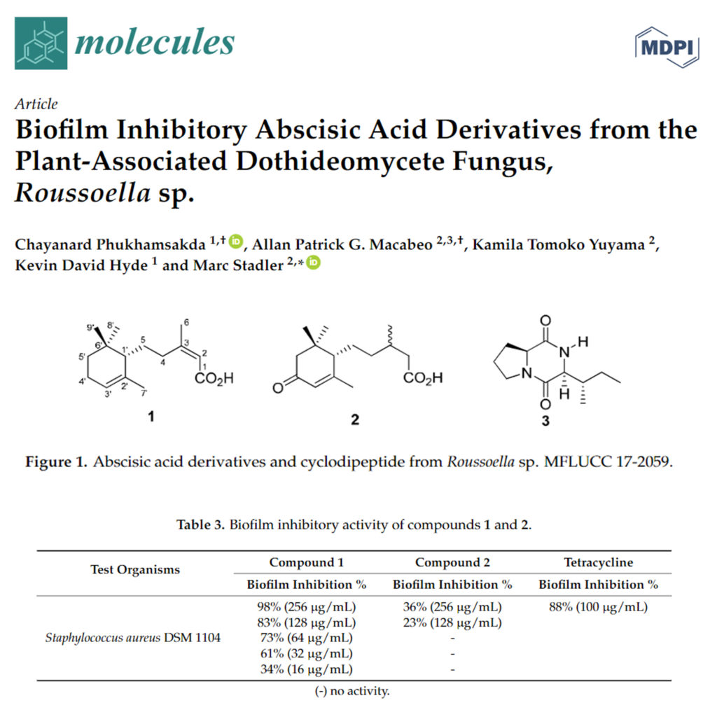 Biofilm Inhibitory Abscisic Acid Derivatives from the Plant-Associated Dothideomycete Fungus, Roussoella sp