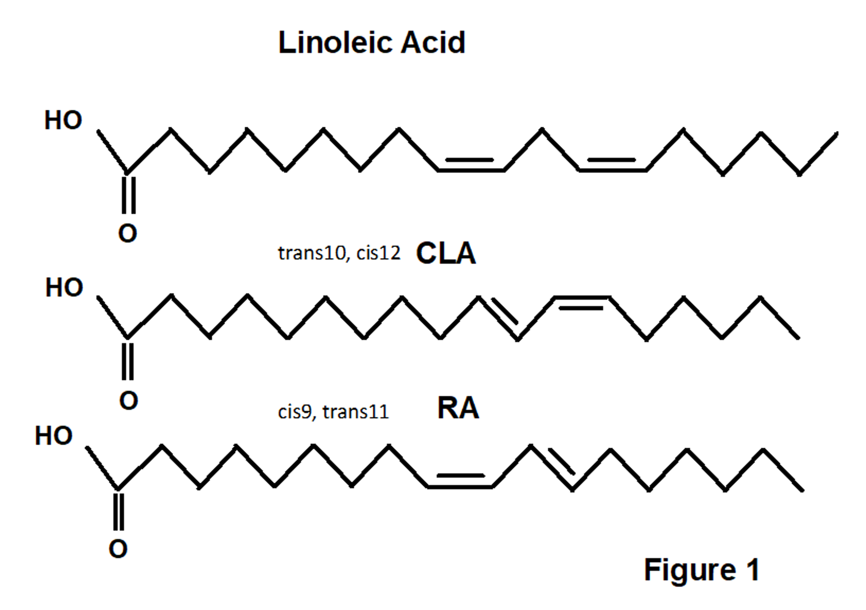 Conjugated linoleic acid CLA and Rumenic Acid RA