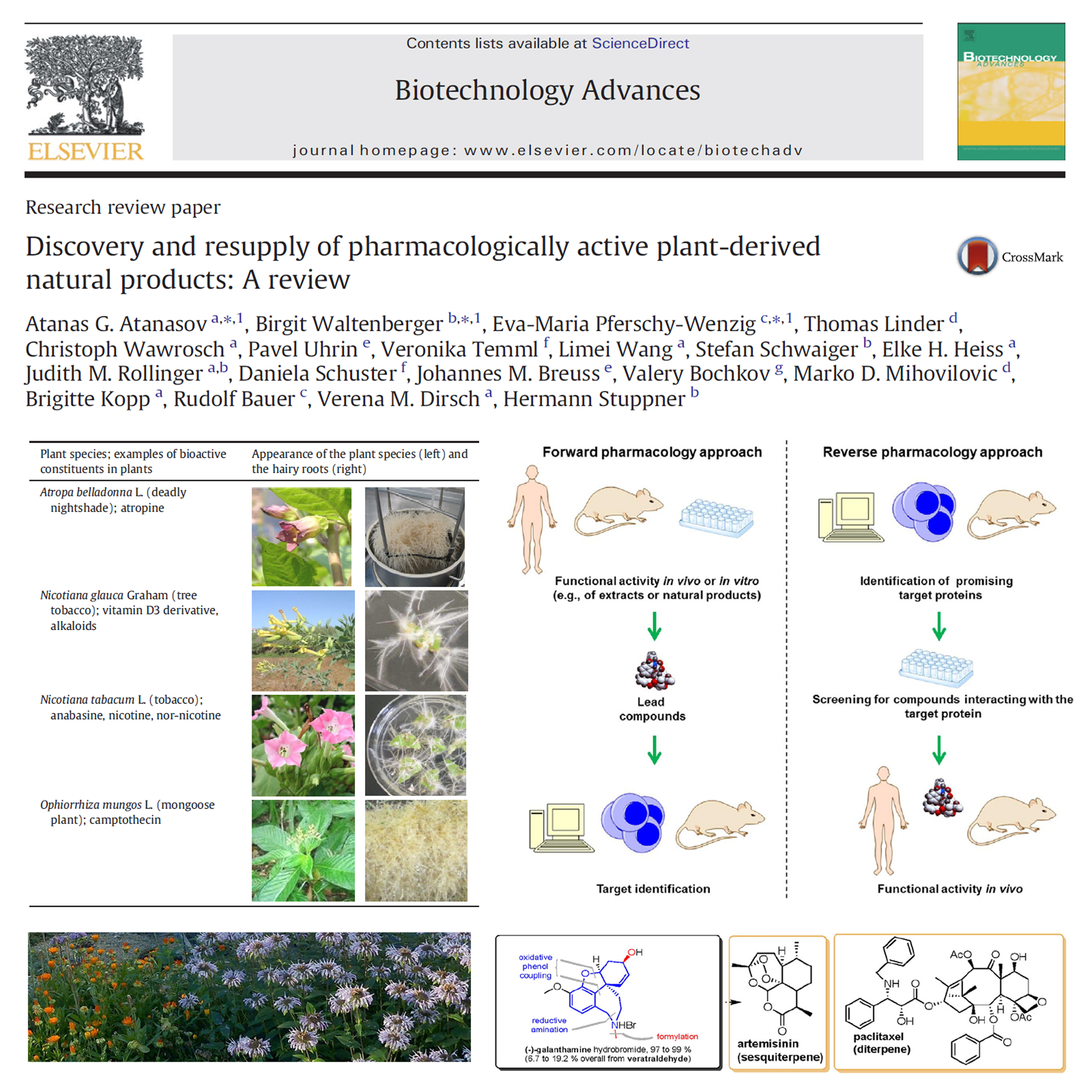 Discovery and resupply of pharmacologically active plant-derived natural products: A review