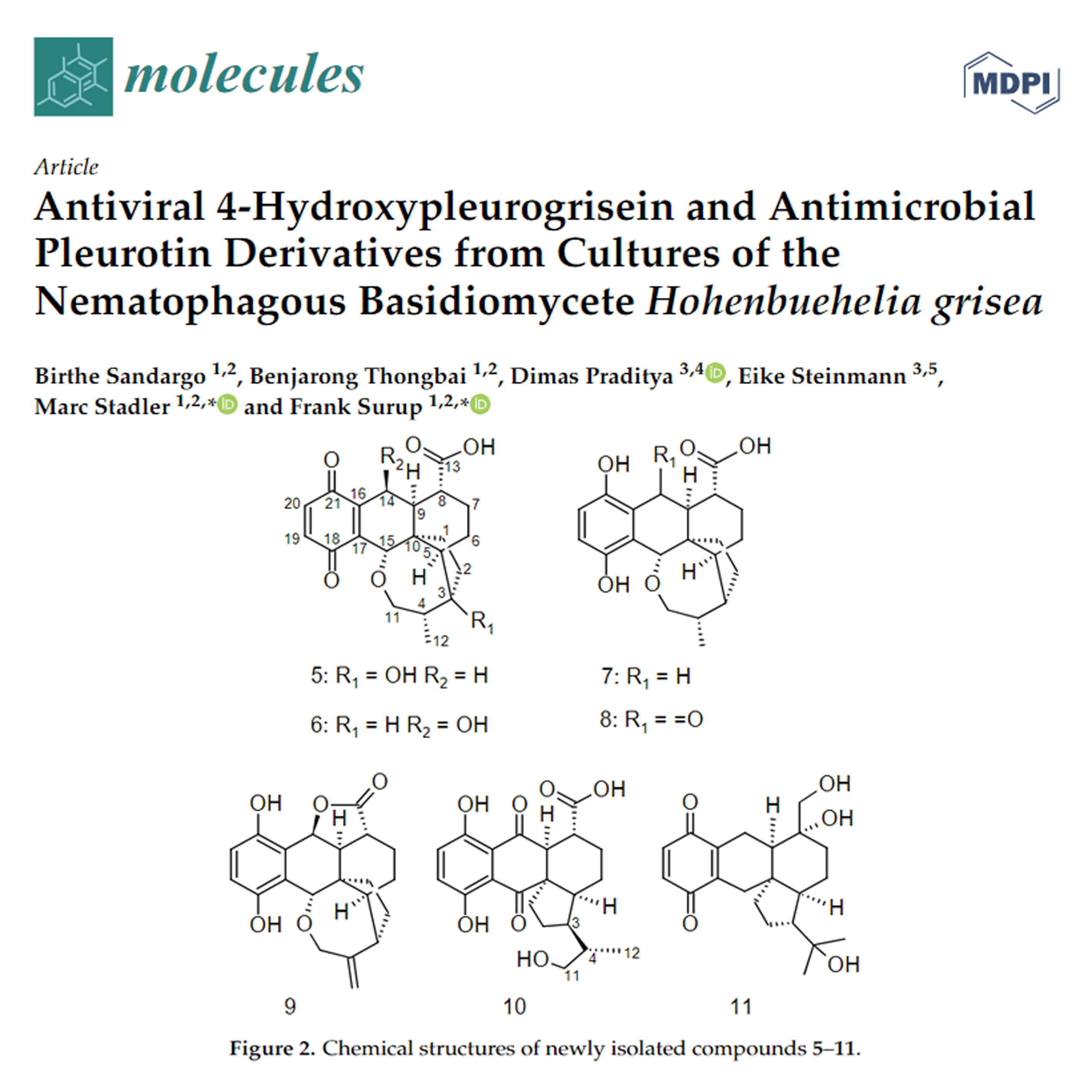 Antiviral 4-Hydroxypleurogrisein and Antimicrobial Pleurotin Derivatives from Cultures of the Nematophagous Basidiomycete Hohenbuehelia grisea