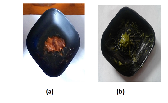 Fig. 3: Herbal sunscreen formulations developed from (a) Leucas zeylanica (b) Ophiorrhiza mungos